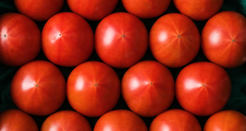 トマトのブランド化について